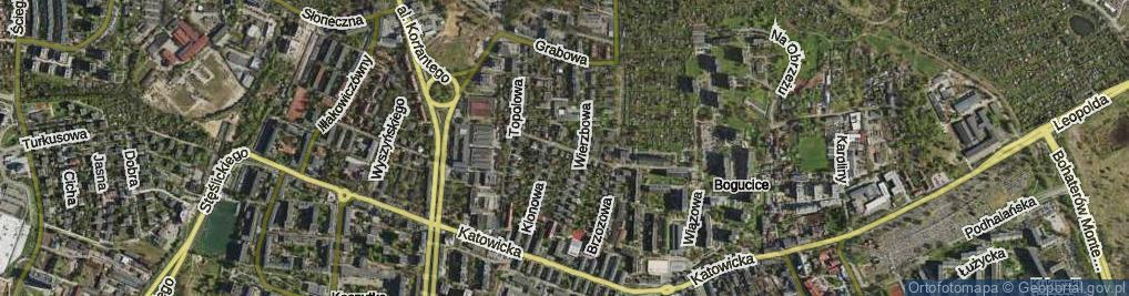 Zdjęcie satelitarne Morwowa