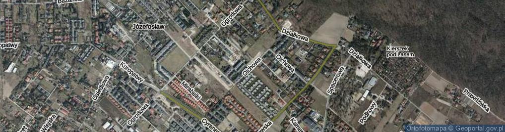Zdjęcie satelitarne Olchowa