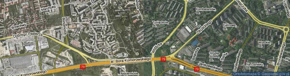 Zdjęcie satelitarne Osiedle 1000-lecia