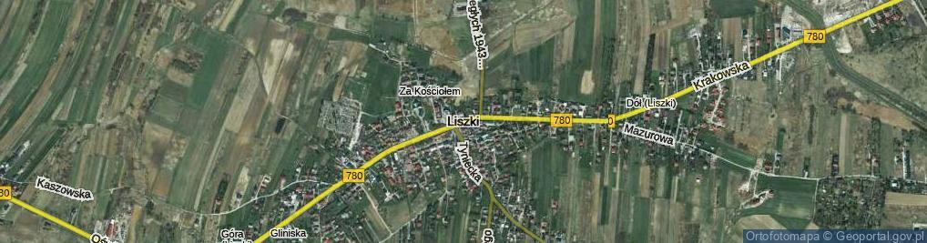 Zdjęcie satelitarne Pustki