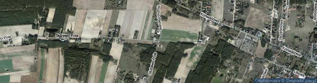 Zdjęcie satelitarne Rożno-Parcele
