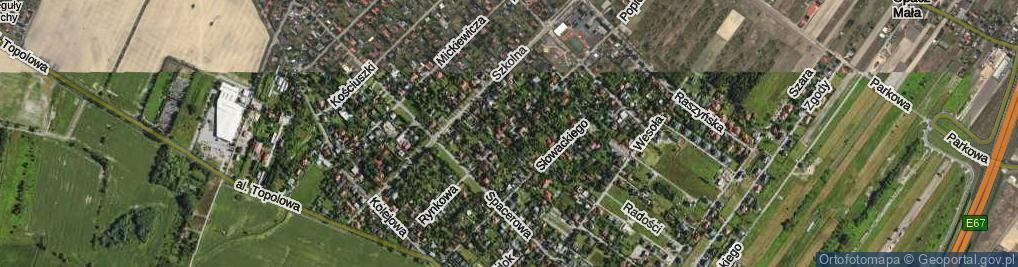 Zdjęcie satelitarne Rynkowa