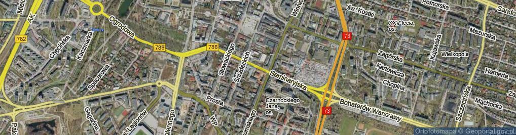 Zdjęcie satelitarne Seminaryjska