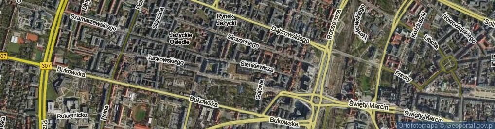 Zdjęcie satelitarne Sienkiewicza Henryka