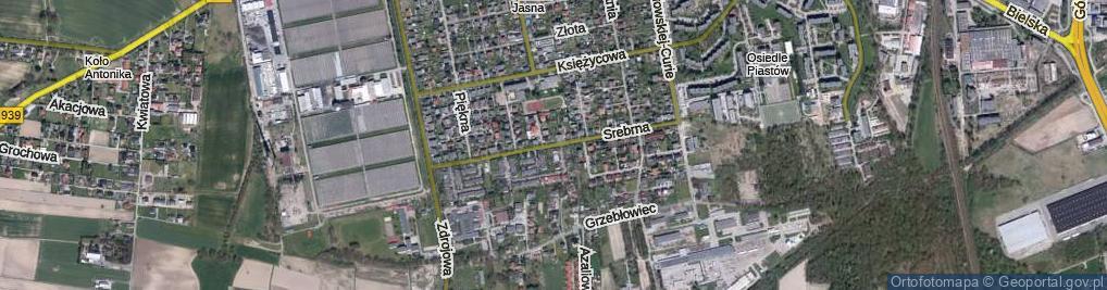 Zdjęcie satelitarne Srebrna ul.