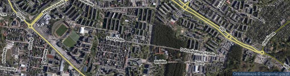 Zdjęcie satelitarne Szara