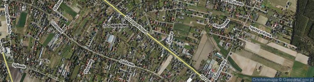 Zdjęcie satelitarne Szczepankowo ul.
