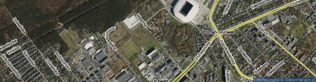 Zdjęcie satelitarne Węgorka Władysława ul.