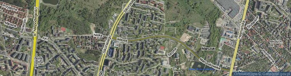 Zdjęcie satelitarne Witosa Wincentego
