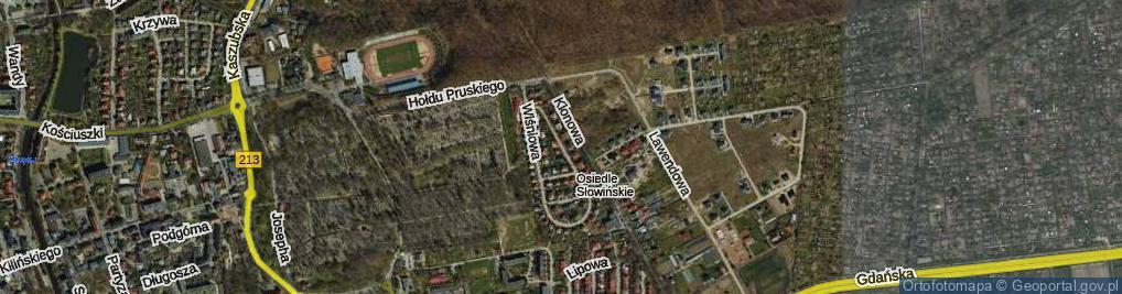 Zdjęcie satelitarne Wiśniowa