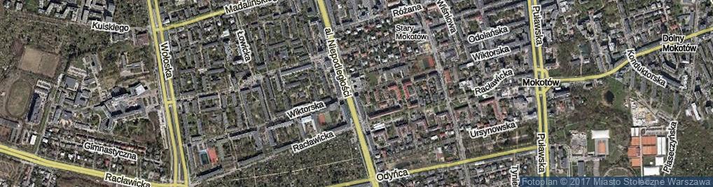 Zdjęcie satelitarne Wiktorska