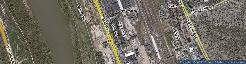 Zdjęcie satelitarne Witkiewicza Stanisława Ignacego
