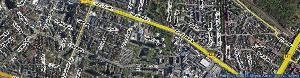 Zdjęcie satelitarne Witolińska ul.