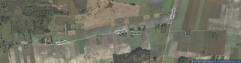 Zdjęcie satelitarne Wygoda