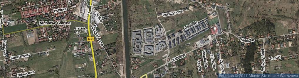 Zdjęcie satelitarne Żeglugi Wiślanej