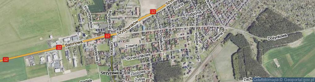 Zdjęcie satelitarne Żniwna