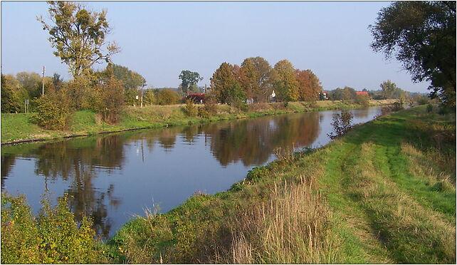 Pławniowice - Kanał Gliwicki, Pławniowice, Nad Kanałem