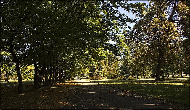 Park Skowroni, Wrocław, Ślężna
