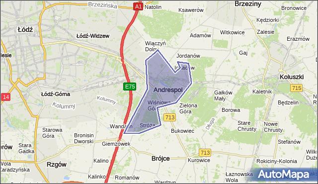 Andrespol City