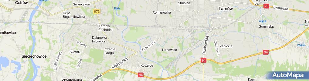 Zdjęcie satelitarne Strusinianka