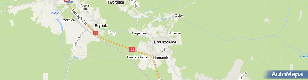 Zdjęcie satelitarne Boruszowice