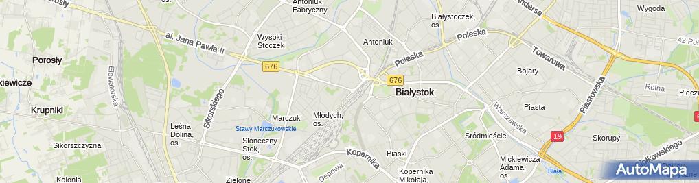 Zdjęcie satelitarne WYPASIONAPIZZA.PL