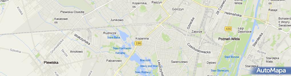 Zdjęcie satelitarne Wiśniowy Sad