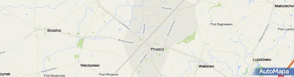 Zdjęcie satelitarne Bank Spółdzielczy w Pruszczu Pomorskim