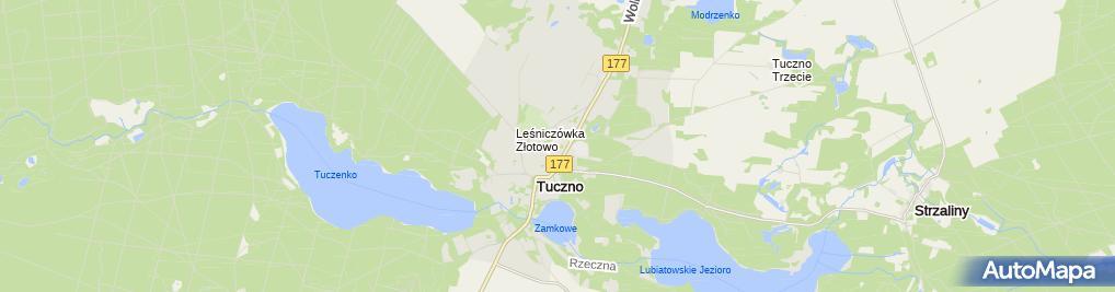 Zdjęcie satelitarne ZS im. Wedlów-Tuczyńskich