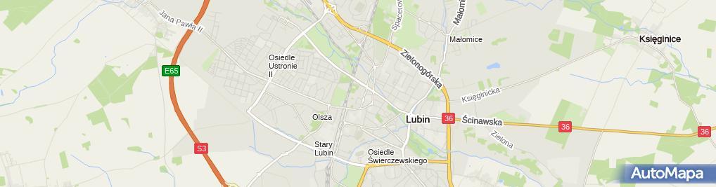 Zdjęcie satelitarne Szpital Rejonowy im. J. Jonstona