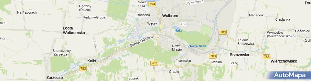 Zdjęcie satelitarne Zespół Szkół im. gen. Romualda Traugutta