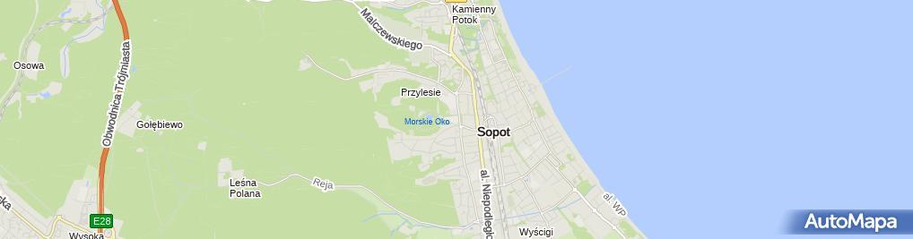 Zdjęcie satelitarne Wydział Zarządzania