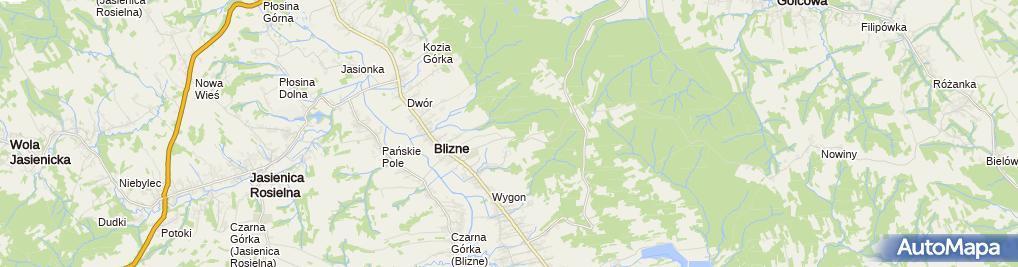 Zdjęcie satelitarne Klasztor sióstr Zawierzenia w Bliznem