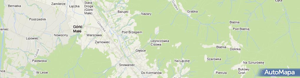 Zdjęcie satelitarne POL Brenna Dworek myśliwski i kapliczka