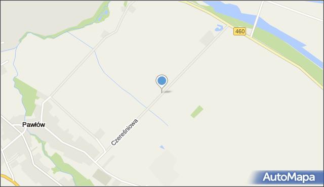 Pawłów, Czereśniowa, mapa Pawłów