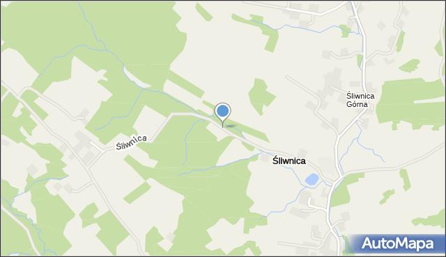Śliwnica, Śliwnica, mapa Śliwnica