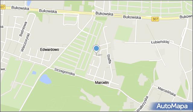 Poznań, Wilkanowicza Romana, mapa Poznania