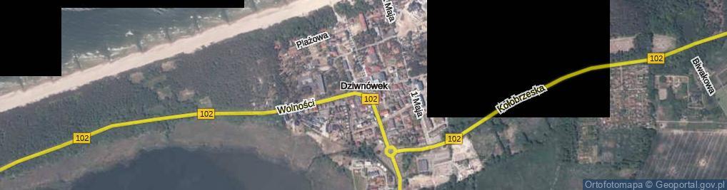 Zdjęcie satelitarne Dziwnówek ul.