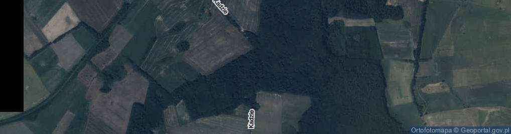 Zdjęcie satelitarne Kadzie ul.