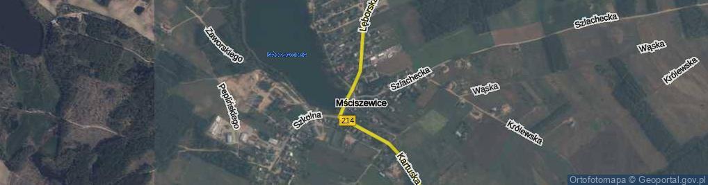 Zdjęcie satelitarne Lewinowo ul.