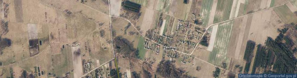 Zdjęcie satelitarne Sasiny ul.