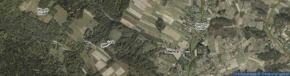 Zdjęcie satelitarne Śliwnica ul.