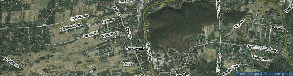 Zdjęcie satelitarne Tenczyńska ul.