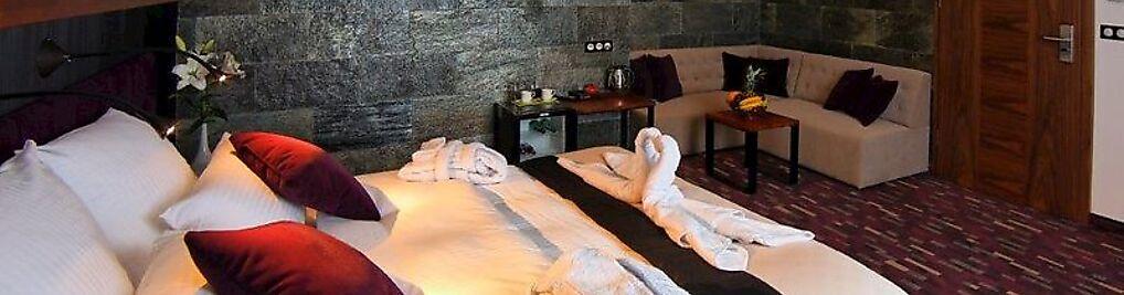 Zdjęcie w galerii Hotel Modus Laziska , Mikołów , Orzesze *** nr 5