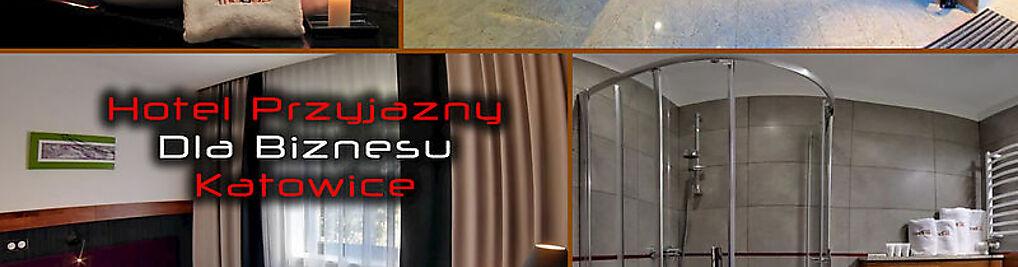 Zdjęcie w galerii Hotel Modus Laziska , Mikołów , Orzesze *** nr 8