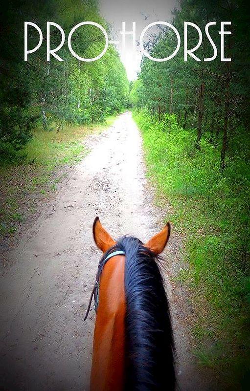 c20b36e508753 Pro-Horse Sklep Jeździecki Internetowy, Dąbrowa Górnicza 41-303 ...